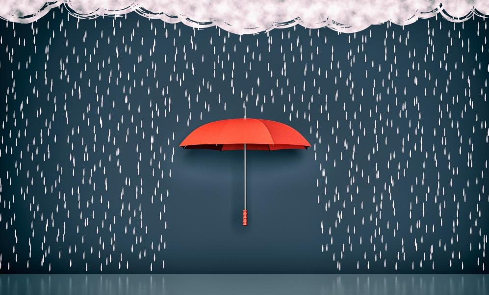 雨で元気がないのかと思いきや…。